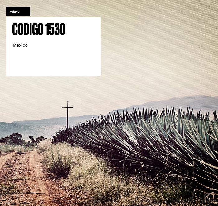 Codigo 1530