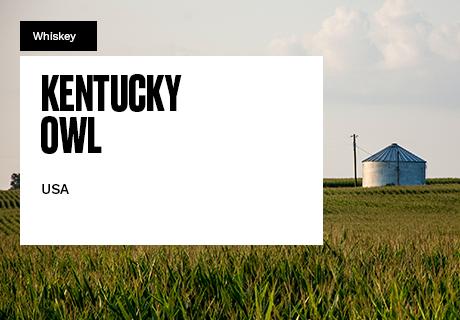 homes-460×320-Kentucky-Owl