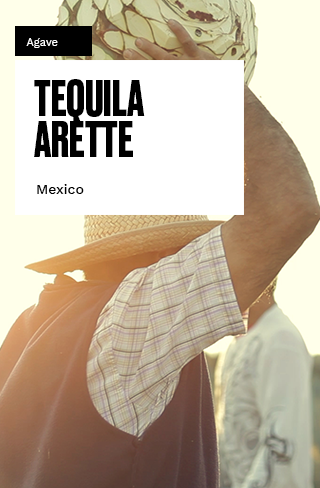 tequila-arette-tall