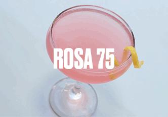 rosa 75