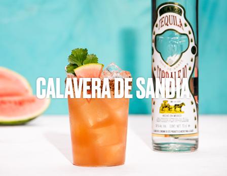 Calavera-de-sandia-v2-port