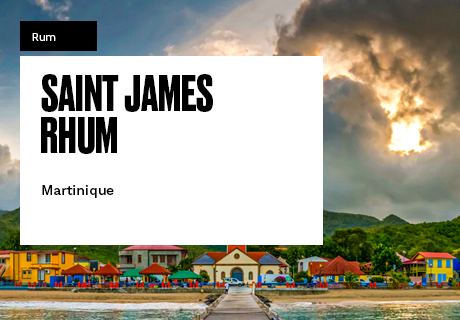 homes-460×320-saint-james